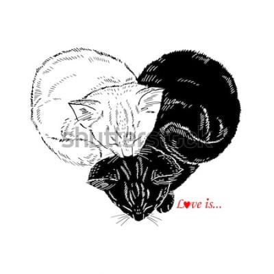 Наклейка Рисованной иллюстрации Черно-белые котята спят в форме сердца, Валентина дизайн, Любовь