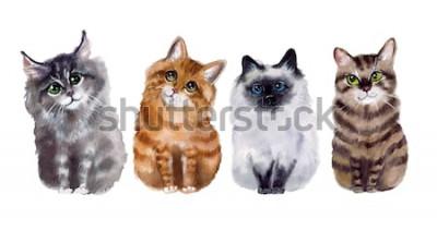 Наклейка Акварельные милые смешные кошки на белом фоне
