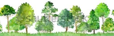 Наклейка акварельный пейзаж с лиственными деревьями, сосной, кустами и травой, бесшовные модели, абстрактный фон природы, лесной каймой, рисованной иллюстрации