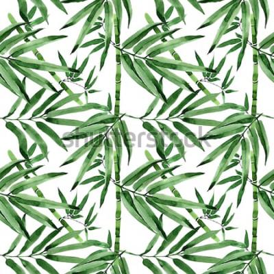 Наклейка Тропические листья бамбука дерево шаблон в стиле акварели. Акварель дикие листья для фона, текстуры, шаблон оболочки, рамки или границы.