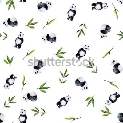 Наклейка Картина панд и бамбука на белой предпосылке. Раскрашенная вручную акварель