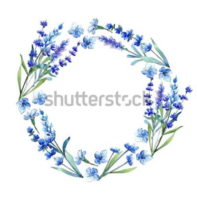 Наклейка Голубая лаванда. Цветочный ботанический цветок. Дикий весенний лист диких цветов кадр в стиле акварели. Акварельный полевой цветок для фона, структуры, образца обертки, структуры или границы.