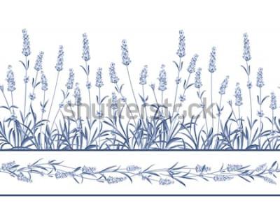 Наклейка Лаванда Бесшовные кадр линии. Букет цветов лаванды на белом фоне. Векторная иллюстрация