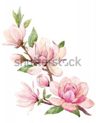 Наклейка Акварельные иллюстрации ветка с цветами розовая магнолия цветок весенняя открытка