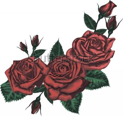 Наклейка Красивый букет с красными розами. Реалистичные вектор искусства - красные розы на белом фоне. - Элемент дизайна для поздравительной открытки