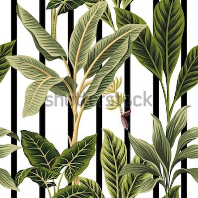 Наклейка Тропические старинные пальмы, банановое дерево цветочные бесшовные модели черно-белые полосы фона. Экзотические ботанические обои джунглей.