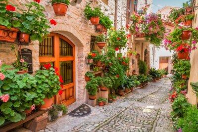 Наклейка Улица в маленьком городке в Италии летом, Умбрия