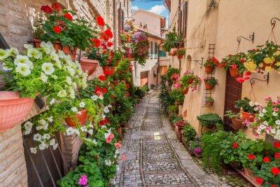 Наклейка Улица в маленьком городке в Италии в солнечный день, Умбрия