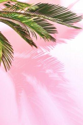 Наклейка Летний тропический пастельный фон с ладонь