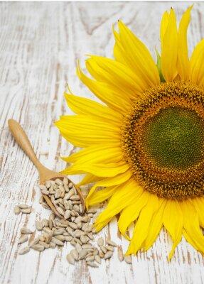 Наклейка Подсолнечник с Семена
