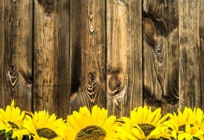 Наклейка Подсолнухи на старых деревянных досках. Цветочный фон с копией пространства