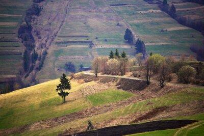 Наклейка Солнечный весна в горной деревне. Поля и холмы