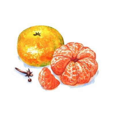 Наклейка мандарины или мандарина фрукты на белом фоне