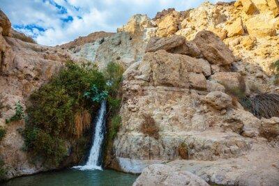 Наклейка Национальный парк и заповедники Эйн-Геди, Израиль