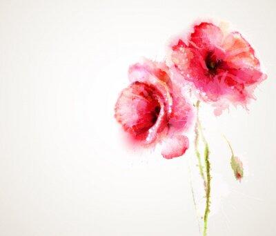 Наклейка Два цветущие красные маки. Поздравительные открытки.