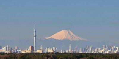 Наклейка Токио вид на город с неба Токио дерева и горы Фудзи