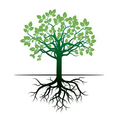 Наклейка Дерево и корни. Векторные иллюстрации.