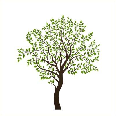 Наклейка Дерево, изолированных на белом фоне