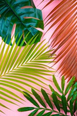 Наклейка tropical palm leaf pink sweet background