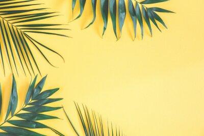 Наклейка Тропические пальмовые листья на желтом фоне. Летняя концепция. Квартира, вид сверху, место для копирования