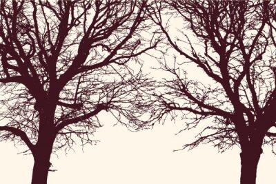 Наклейка два дерева