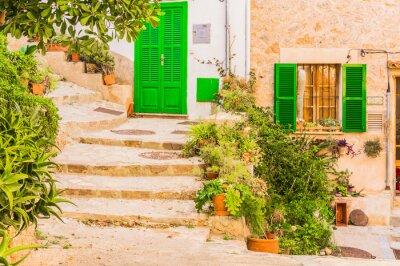 Наклейка Типичные украшения завода в старом деревенском Mediterranean Village