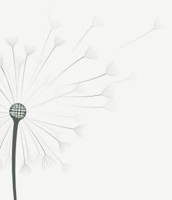 Наклейка Вектор цветок одуванчика