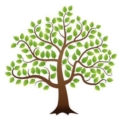 Наклейка Вектор зеленый дерево на белом фоне
