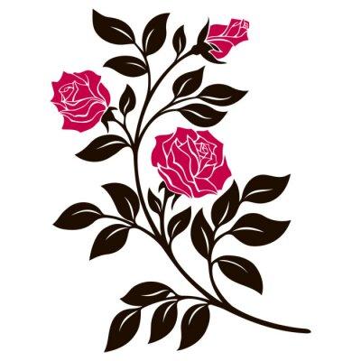 Наклейка векторные иллюстрации, элемент оформления, черно-белая роза ветвь с красными цветами