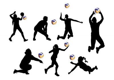 Наклейка векторные иллюстрации графический фон волейболисты спорт
