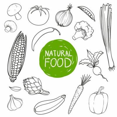 Наклейка Векторная иллюстрация рисованной овощи