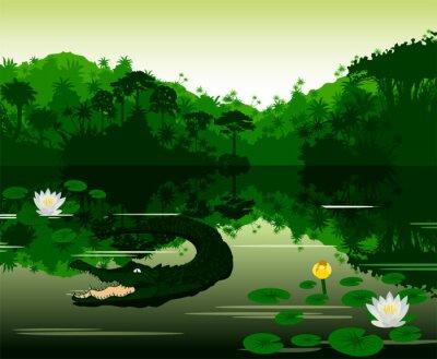 Наклейка Векторные иллюстрации Тропический река с крокодилом