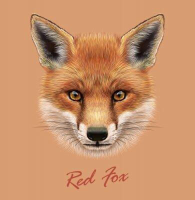 Наклейка Вектор Иллюстративное Портрет Red Fox