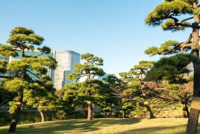 Наклейка Вид на токийский городской пейзаж с видом на парк