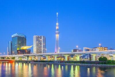 Наклейка View of Tokyo Skytree landmark and Sumida river at night.