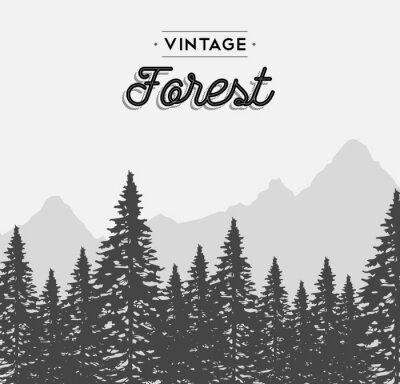 Наклейка Урожай лес текст этикетки на зиму дерево пейзаж