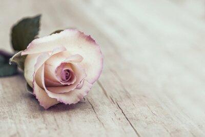 Наклейка Урожай Роуз