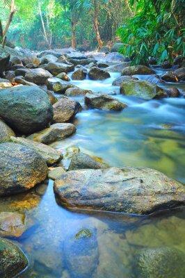 Наклейка Расход воды через породы в мелкий ручей в Малайзии джунглей
