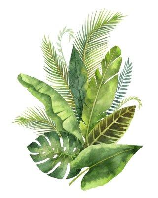 Наклейка Акварельный букет тропических листьев и ветвей, изолированных на белом фоне.