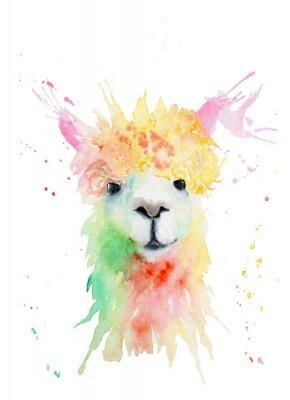 Наклейка watercolor drawing of an animal - alpaca, drops, splashes