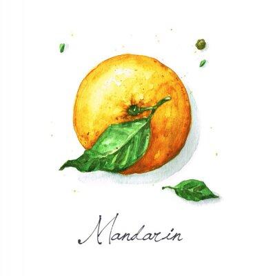 Наклейка Акварели еды Живопись - мандарин или оранжевый