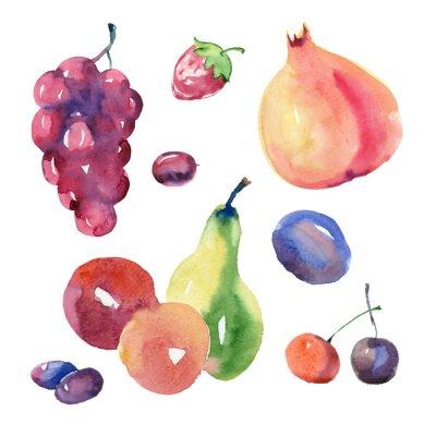 Наклейка Набор фруктов акварель