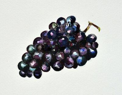 Наклейка акварель виноград