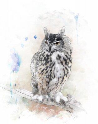 Наклейка Акварель Изображение совы