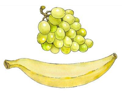 Наклейка Акварель набор фруктов: виноград и бананы