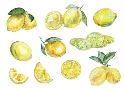 Наклейка Акварельная живопись. Vintage набор лимонов.