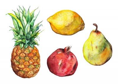 Наклейка Акварели ананас Гранат лимон груши фрукты набор изолированных