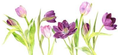 Наклейка Акварельные фиолетовые и розовые тюльпаны