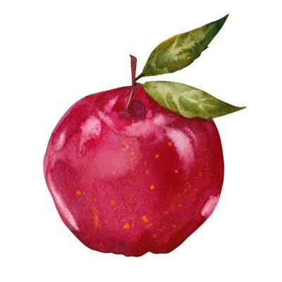 Наклейка акварель красное яблоко
