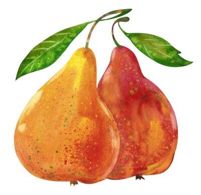 Наклейка Watercolor tasty pears hand drawn illustration